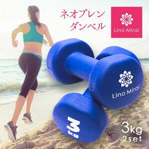 ダンベル 3kg 2個 2個セット セット ブルー 重り 筋トレ 可愛い かわいい レディース コンパクト 収納 自宅 女性 女性向け エクササイズ 小さめ 小さい 3kg LMS91NH020