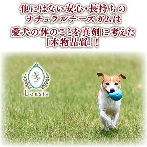 他にはない安心・長持ちのナチュラルチーズガムは愛犬の体を考えた本物品質