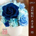 プリザーブドフラワー 送料無料 Bloom カーネーション 花 誕生日 プレゼント 女性 母 父 ケース入り 結婚祝い 青いバ…