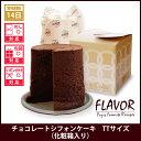 Flavor 104 181