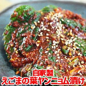 【冷蔵便】自家製 えごまの葉 ヤンニョム漬け 500g キムチ 本場の味 韓国 食品 食材 料理 おかず おつまみ
