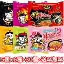 【送料無料】ブルダック 炒め麺5個 x 6種 30個セット 韓国 食品 食材 料理 ブルタッグ ブルダッグ