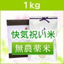 <送料無料>快気祝いにアイガモ農法で栽培した最高級の新潟米コシヒカリを【快気祝い・無農薬米1kg】
