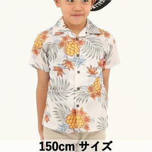 かりゆしウェア 沖縄アロハ アロハシャツ MANGO HOUSE マンゴハウス 国産 リゾート 結婚式 キッズシャツ パイナップルパラダイス  150cm