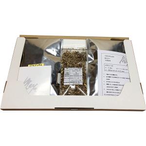 [メール便 送料無料 1000円ポッキリ]マサラチャイセット ご家庭で作るお手軽本格マサラミルクティー 紅茶 1000円ポッキリ 香辛料 スパイス