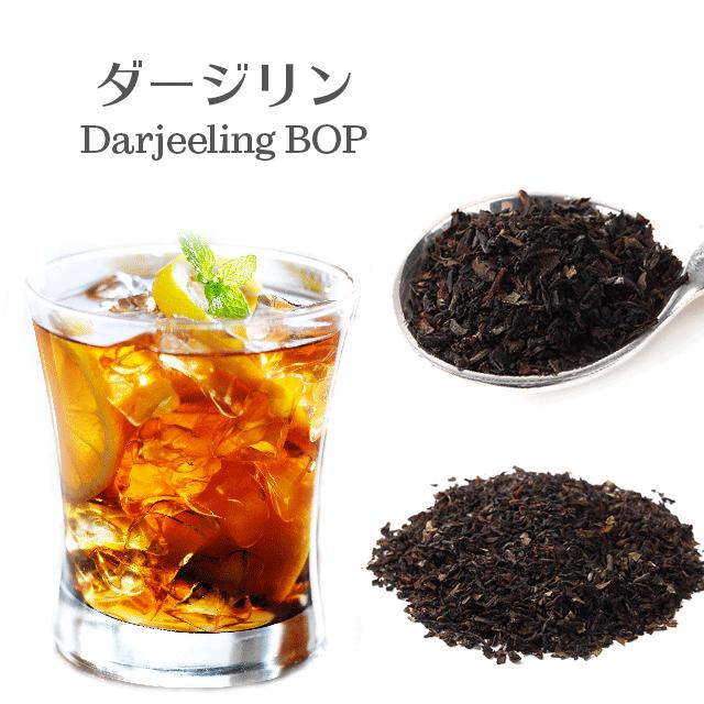 [紅茶]2016 CASTLETON茶園 DJ-470 TGBOP(CH)SPL 100g 秋摘み茶 茶葉 ブロークンタイプ オータムナル ゴールデンダージリン