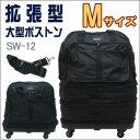 Sw12mini01