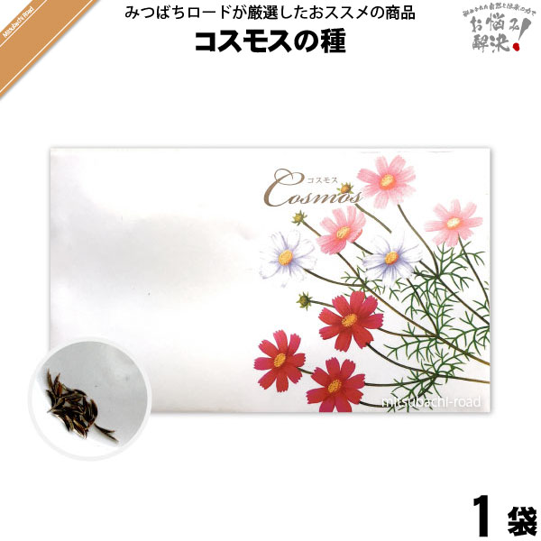 コスモスの種 (1袋) 【クーポン配布中】 こすもす 花の種 種子 タネ たね 【5250円以上で送料無料】