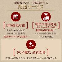 宮崎完熟マンゴーIwaman5イワマンファイブ3L×1玉/宮崎マンゴー父の日高級フルーツギフトプレゼント太陽のタマゴの生産で最優秀賞を受賞した農家が作る今までにないマンゴー