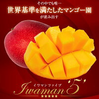 マンゴー宮崎産完熟iwaman5イワマンマンゴー3L送料無料父の日お中元