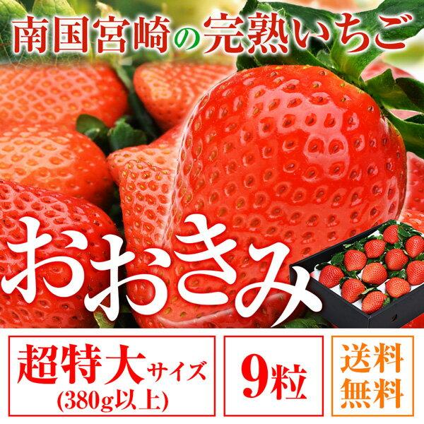 送料無料 超特大サイズ 9粒 380g以上(1粒あたり40g以上) いちご イチゴ 苺 大粒 高級 超大きくて甘い おおきみ タルト ショートケーキ の材料にも フルーツ 果物 あまおう とちおとめ あきひめ スカイベリー よりも 大きい ギフト
