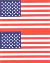 星条旗(米国旗・アメリカ)★フェイスシール【応援(サポーター)】/1シート2枚組