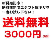 クルーネック丸首Tシャツエジプト綿ギザGIZAイージーモンキー限定日本製MadeinJAPANコットン100%コーマ糸CREWNECK半袖Tシャツスーパーソフト肌着メンズ男性インナー