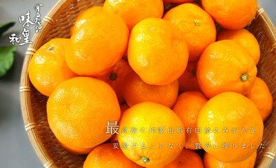 みかんジュース有田みかん【味皇】【和】100パーセントオレンジジュース送料無料高級ジュース和歌山県産有田産