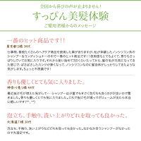 【公式】<新発売>マイナチュレスカルプシャンプー
