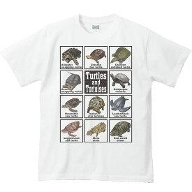 カメ大好き!/半袖Tシャツ