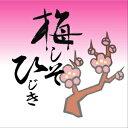 【送料無料】ネコポス発送!梅しそひじき50g×2袋