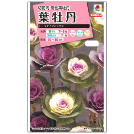 ハボタン 種子 タキイ交配 葉牡丹・F1 ファインミックス (育苗可能本数:およそ60本) 0.5ml 【ラッキーシール対応】