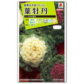 ハボタン 種子 タキイ交配 葉牡丹・F1 かもめ混合 (育苗可能本数:およそ70本) 0.5ml 【ラッキーシール対応】