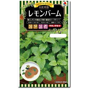 ハーブ 種子 レモンバーム 0.5ml(Lemonbalm メリッサ)