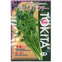 パクチー 種子 サバイ 10ml(シャンツァイ、コリアンダー) 【ラッキーシール対応】