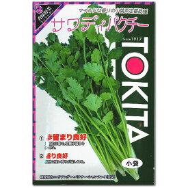 パクチー 種子 サワディ 10ml(シャンツァイ、コリアンダー)