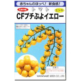 ミニトマト 種子 CFプチぷよイエロー 11粒 とまと 【ラッキーシール対応】