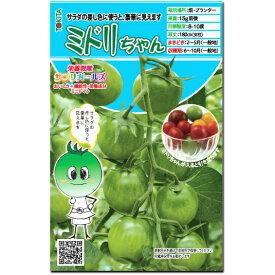 ミニトマト 種子 ミドリちゃん 8粒 とまと サプリガールズシリーズ 【ラッキーシール対応】