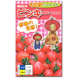 ミニトマト 種子 ピンキー 20粒 とまと 【ラッキーシール対応】
