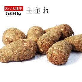 さといも 土垂れ 種芋 500g サトイモ 里芋