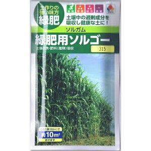 緑肥 ソルガム 種子 緑肥用 ソルゴー (面積およそ10m2分) 60ml