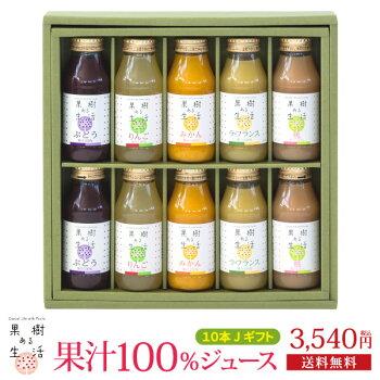 果汁100%のジュース&スムージー10本ギフト