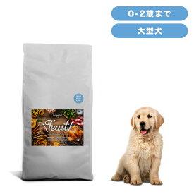 INUMESHI フィースト 子犬用 大型犬用 15kg ブリーダーパック