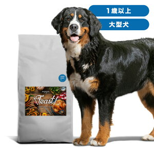 INUMESHIフィースト成犬用大型犬用1歳以上15kgブリーダーパック