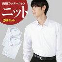 【送料無料】長袖 ニットシャツ A体 B体 2枚セット ポリエステル90% キュプラ10% | 男子 メンズ ニット 形態安定 抗…
