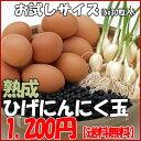 Test kuro1