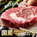 国産牛 厚切りサーロインステーキ1ポンド 450g以上 肉 牛肉 ブロック ステーキ肉 焼肉 バーベキュー