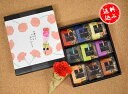 日本橋錦豊琳かりんとう9個箱 母の日限定カーネーション付きセット