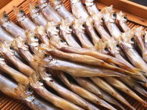【冷凍】国産柳葉魚〈シシャモ〉【干物】1箱、30尾前後