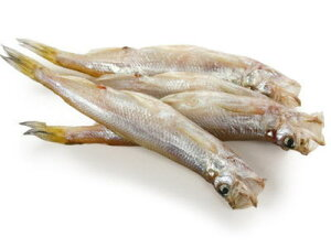【冷凍】柳葉魚〈シシャモ〉【干物】1箱、20尾前後