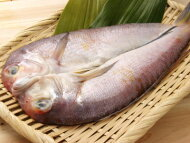 【鮮魚】甘鯛〈アマダイ〉1匹、1Kg前後