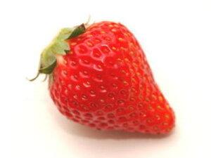 輸入苺〈イチゴ〉1ケース、16パック前後、4Kg前後