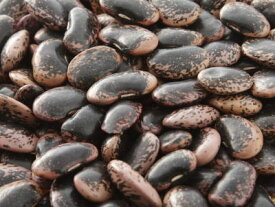 【乾物】花豆〈ハナマメ〉別称:紅花隠元豆〈ベニバナインゲンマメ〉1Kg