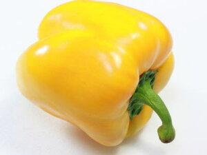 パプリカ〈黄〉1個、160g〜200g前後
