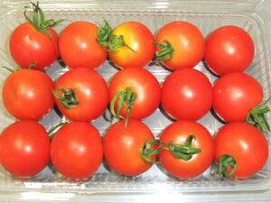 ミディトマト『ペティトマト』1パック、12〜15個前後、200g〜300g前後