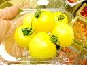 黄色系ミディトマト1パック、100g〜200g前後、10〜30個前後