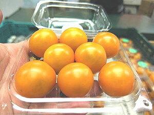 オレンジ系ミディトマト1パック、100g〜200g前後、10〜30個前後