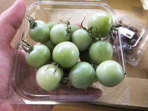 グリーン系ミニトマト1パック、12〜20個前後、100g〜200g前後