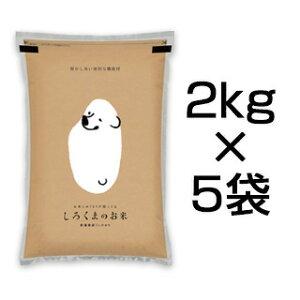 令和2年(2020年) 新潟県産 コシヒカリ 10kg (2kg×5袋)【白米】【送料無料】【米袋は真空包装】