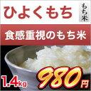 28-kuma-hiyoku-1